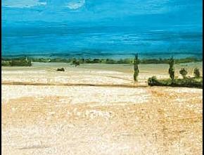Dalle vigne ai campi di cotone