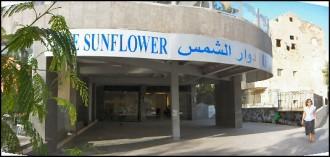Centro Sunflower