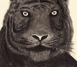 La tigre di Santarcangelo 2014