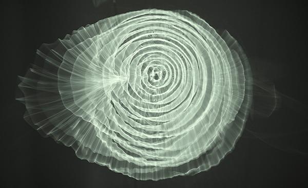 Idrofoni o Lampade sensibili di Pietro Pirelli