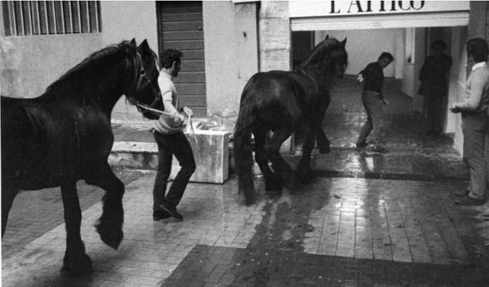 Fabio Sargentini osserva i cavalli di Jannis Kounellis che entrano a L'attico (allora il garage di via Beccaria), il 14 gennaio 1969 (photo: fabiosargentini.it)