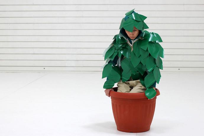 Estado vegetal (photo: Maida Carvallo)