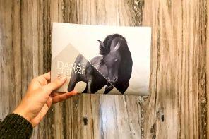Danae Festival 17: cavalli di ritorno e visioni profetiche