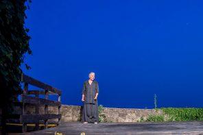 Il viaggio di Psiche di Sista Bramini (photo: Alvise Crovato)