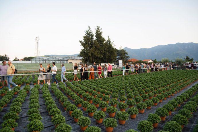 Gli spettatori di Terreni Creativi nelle serre di Albenga